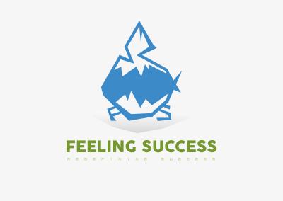 FEELING SUCCESS